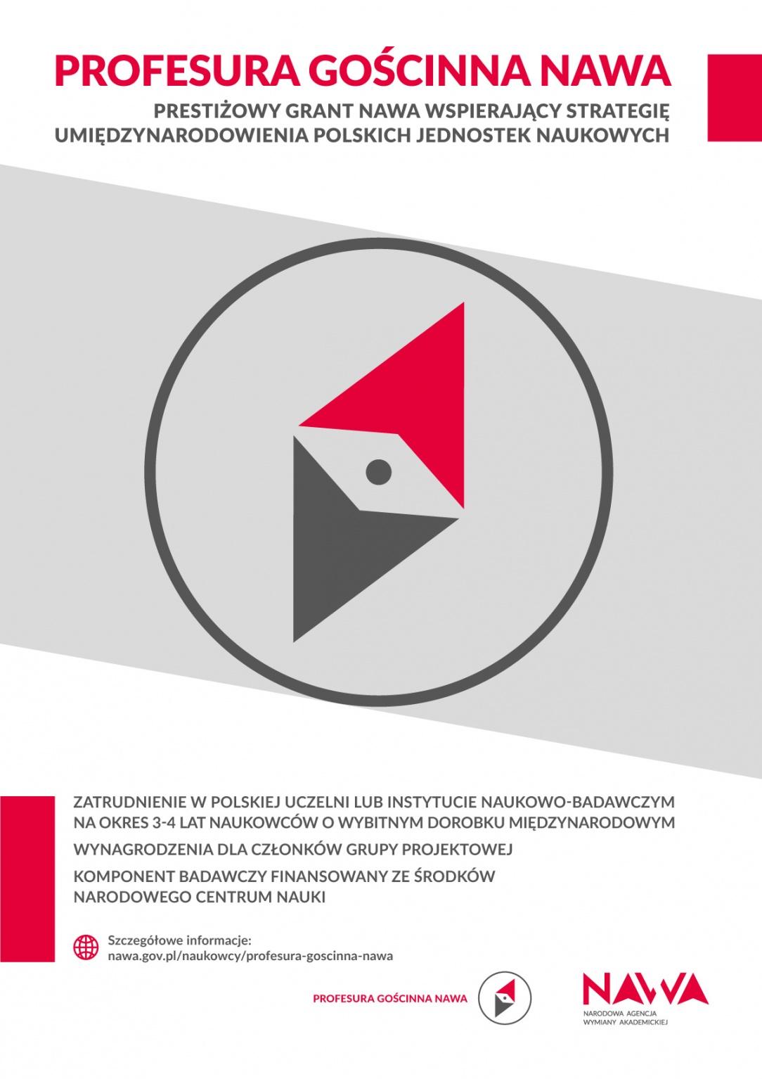Profesura Gościnna NAWA – nowy program dla naukowców