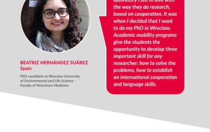 Kierunek: umiędzynarodowienie szkół doktorskich – nabór do Programu STER otwarty