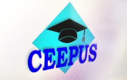 Wirtualna mobilność CEEPUS w Polsce